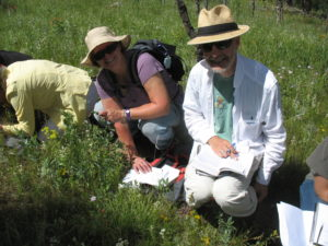 Native Plant Master participants identifying plants on a field trip