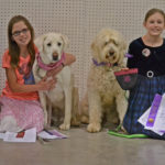 4-H Youth with their dogs at the Jeffco fair dog show