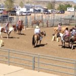 4-H members participating in a western riding and horsemanship clinic