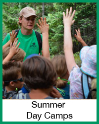 4-H Summer Day Camps