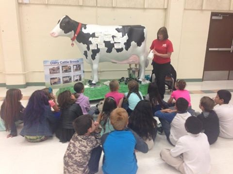 Multiple partners created a day for kids to learn where food comes from.