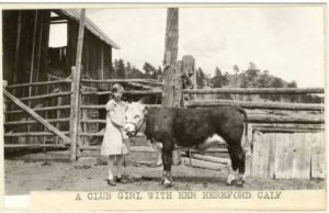 Girl with her 4-H calf circa 1930s
